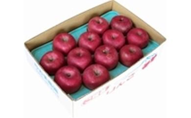 りんごCA-5 信州旬のおまかせりんごA