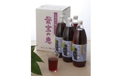 ジュースGA-5 信州産巨峰ジュース紫宝の恵