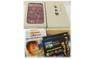 干柿GF-2 市田柿と加工品詰合せ