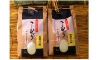 №11 美濃白川産コシヒカリ