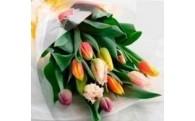 ②チューリップ切花(12本)