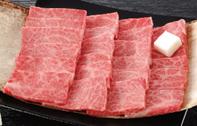 Y098 熊野牛 焼肉用肩ロース450g×2【20,000pt】