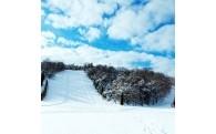 安平山スキー場リフト回数券(11回×2セット)