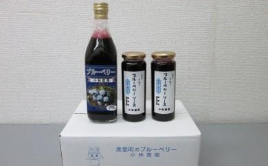 ブルーベリージュースとソースのセット【小林農園 丹精込めて摘んでます!】[0007-1801]