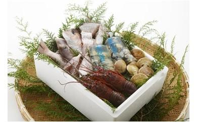 HA-① 漁師鍋水炊きセット