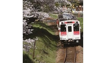 A1005 松浦鉄道1日フリー切符大人用1枚