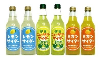 B005 伊豆ニューサマーサイダー24本セット