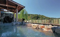 J001かなや明恵峡温泉ペア入浴券とお食事とお土産券【40pt】