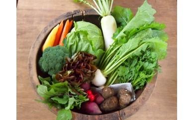 オーガニック野菜(有機野菜)と季節の加工品詰め合わせセット