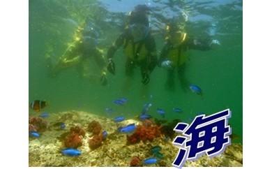 (C-1) 延岡の海を楽しむ!アウトドア体験ツアー