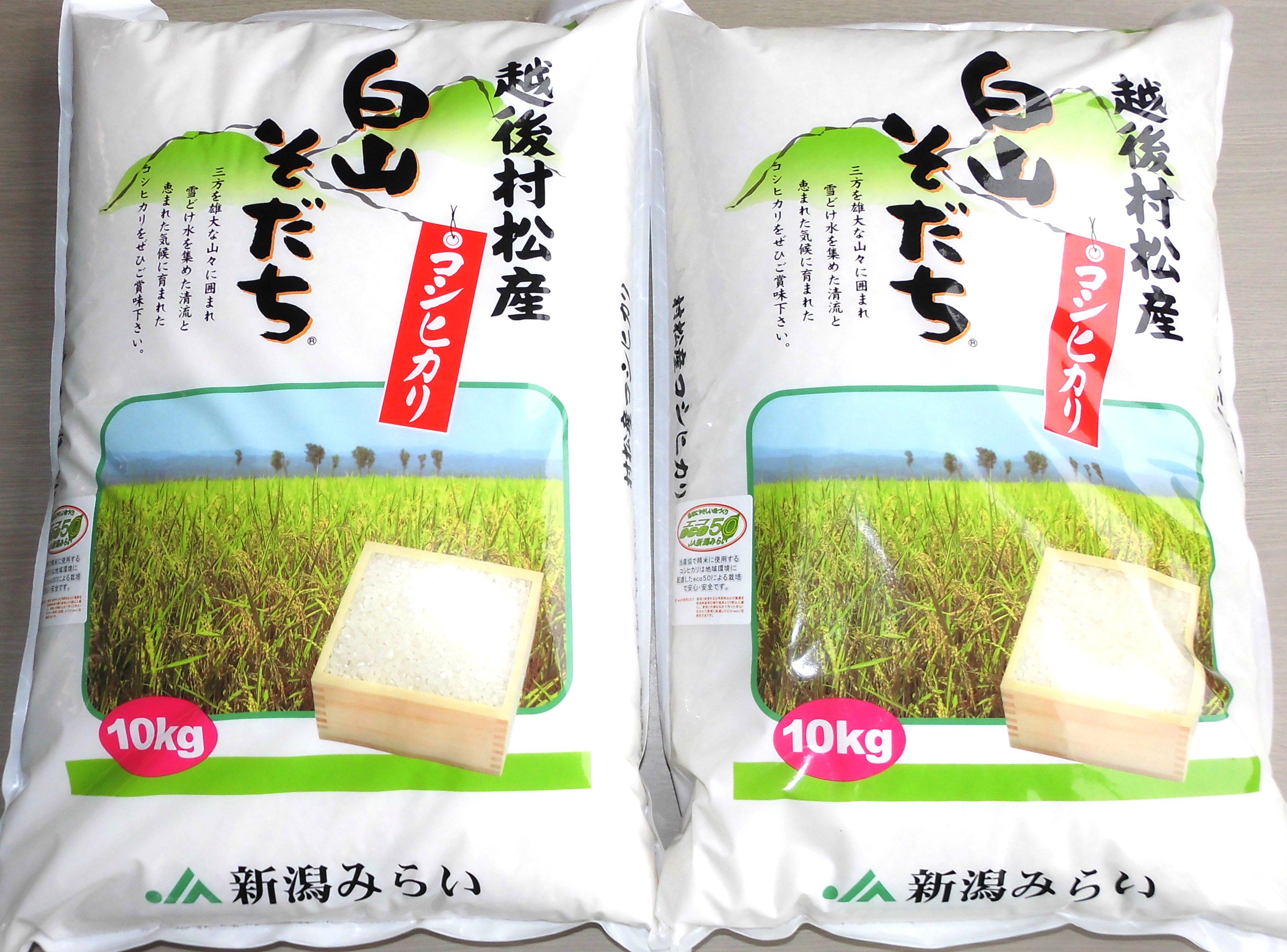 【I-01】五泉産コシヒカリ「白山そだち」20kg