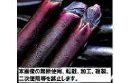 【B2】松山長なす