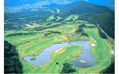C013 稲取ゴルフクラブ 昼食付1ラウンドセルフプレー券