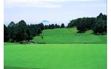 D009 稲取ゴルフクラブ 昼食付1ラウンドセルフプレー券(ペア)