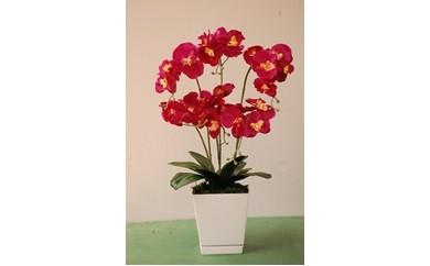胡蝶蘭(造花)
