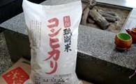 新潟産コシヒカリ 瓢湖米10kg