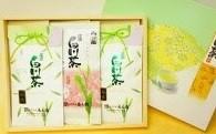 №8 菊之園厳選 白川茶3本セット