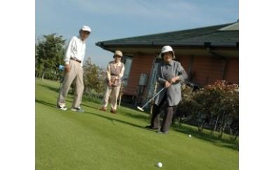 535 パターゴルフ利用回数券(シルバー用)