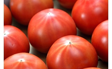 012902 高糖度トマト 「アメーラ」