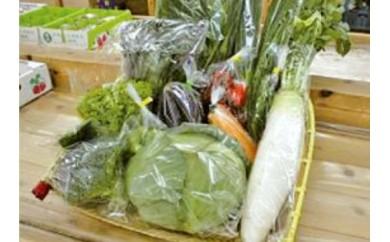 季節の地元野菜・果物の詰め合わせ