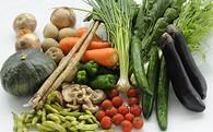 【F-5】しまなみ四季の野菜と果物セット(1箱×4回)(森のともだち農園玉川町)  12.0P