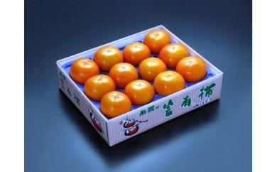 10S-0001 柿の王様 マルイトの富有柿
