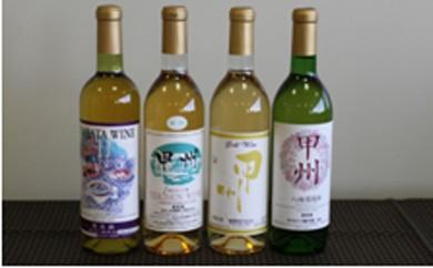 0302 ワイン720ml 白2本おまかせセット