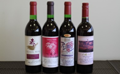0303 ワイン720ml 赤2本おまかせセット