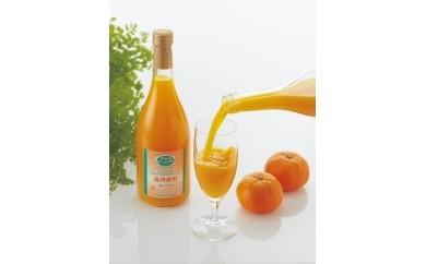 【B62】丸しぼり果汁720ml2本セット
