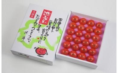 B-1 特選フルーツトマト