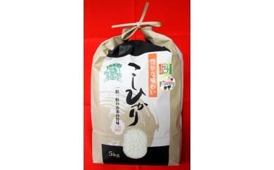 A1 特別栽培米こしひかり
