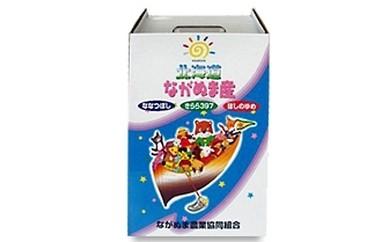 B-4 【平成29年産米】「長沼産のお米 ななつぼし 5kg×2袋」