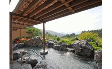 尾瀬の郷 花咲の湯 入浴半年間パス (2枚)