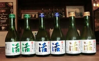 C1401春鶯囀(しゅんのうてん)生酒蔵元直送「活」セット