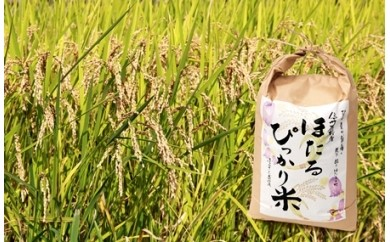 A02 辰野産コシヒカリ「ほたるぴっかり米」