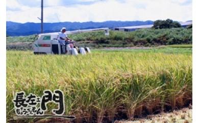 B038 射手矢さんちの「お米(ヒノヒカリ)」11キロ