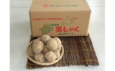 【A012-1】津別町産特別栽培馬鈴薯20kg