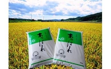 【B025-1】今井農場 あっぱれ米20kg(精米)