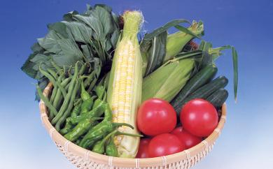 【1-7】旬の野菜詰合せ おまかせセット【限定30/月】
