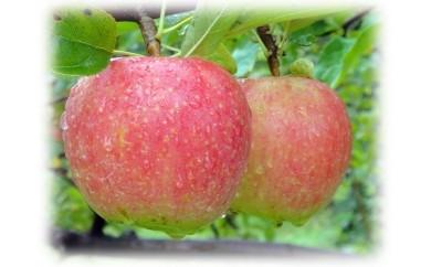 ⑫となみ野りんご(りんご6個、ジュース1本)