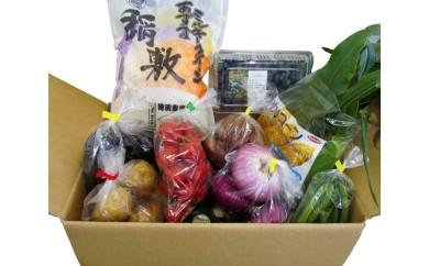 No.027 稲敷産・地元野菜の食育のお便り便 / お米 セット 季節 茨城県 人気