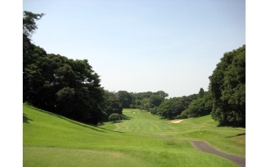 No.047 平日ペアゴルフプレーフィ無料券(JGMセベバレステロスゴルフクラブ)