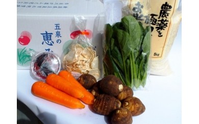 【G-08】減々米コシヒカリと旬の農産物詰め合わせ