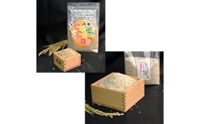 津山産特別栽培米 カラダ麗し米 10kg 巨大胚芽米CoCoRo 3kg