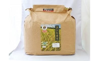 C07 真空米びつ いすみ米30kg