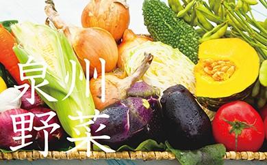 E011 季節の泉州野菜セット(大)半年セット(毎月6回発送)