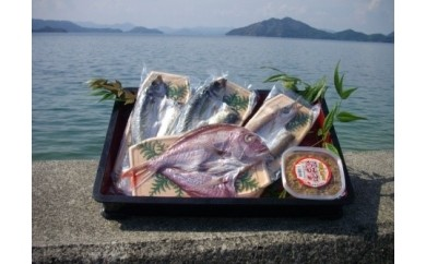 【B-33】瀬戸内海の贈り物(中) (大三島漁協 大三島町)   1.0P