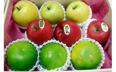 【0504】シオキチのフルーツ