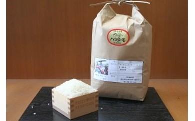 【0502】岐阜県産ハツシモ(3キログラム)