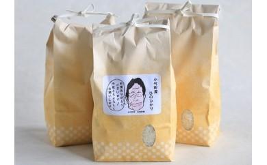 小竹町産 お米 「ひのひかり」